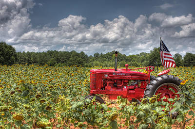 Sunflower Photograph - Sunflower Field With Farmall Tractor by Gerald Adams