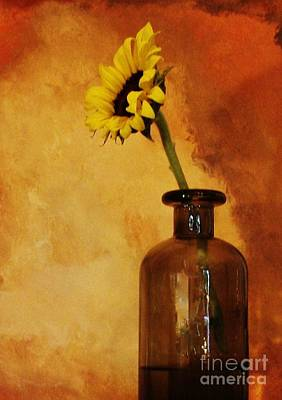 Seaglass Photograph - Sunflower In A Brown Bottle by Marsha Heiken