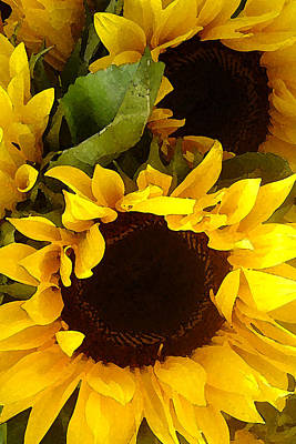 Floral Photograph - Sunflowers Tall by Amy Vangsgard