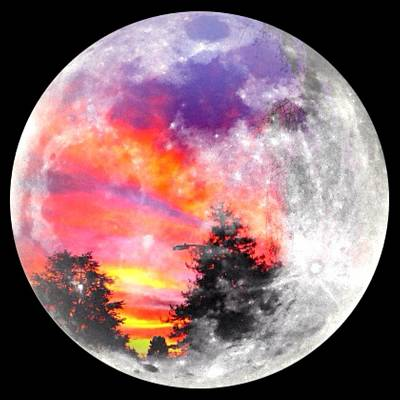 Sunrise And Full Moon Print by Anne Thurston