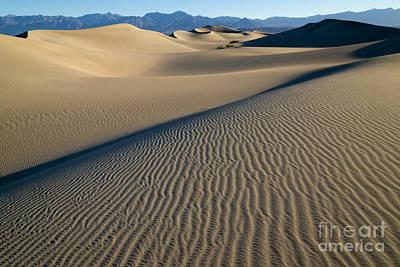 Sunrise At Mesquite Flat Sand Dunes Print by Sandra Bronstein