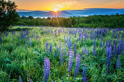 Sunrise From Sampler Fields - Sugar Hill New Hampshire Print by Thomas Schoeller
