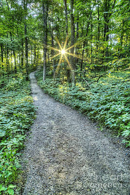 Sunrise On The Trail Print by Twenty Two North Photography