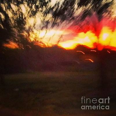 Sunset And Trees Original by Genevieve Esson