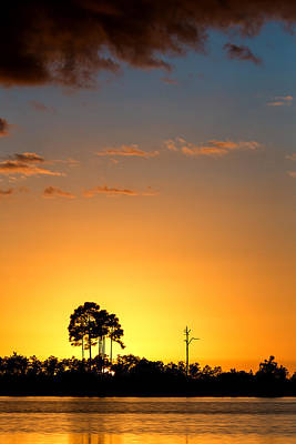 Pond Photograph - Sunset At Long Pine Key Vertical by Andres Leon