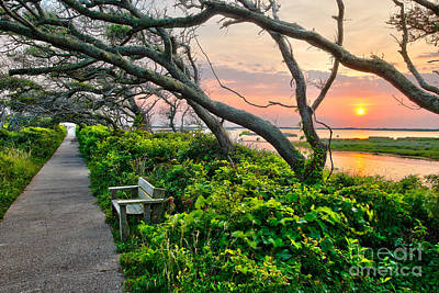 Sunset At Pea Island Wildlife Refuge Outer Banks I Print by Dan Carmichael