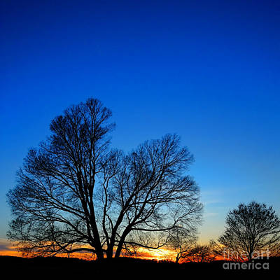Sunset At Valley Forge Print by Olivier Le Queinec