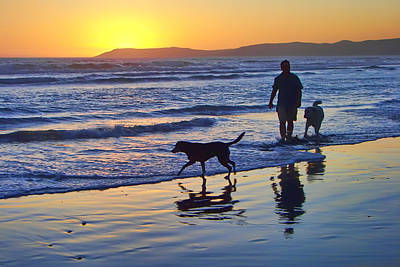 Sunset Beach Stroll - Man And Dogs Print by Nikolyn McDonald