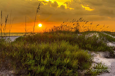 Oat Photograph - Sunset Dunes by Marvin Spates