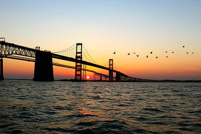 Chesapeake Bay Photograph - Sunset Flight by Jennifer Casey