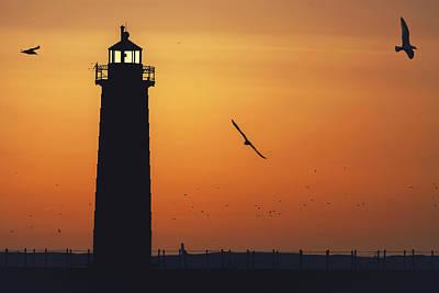 Sunset Flight Print by Joe Gee
