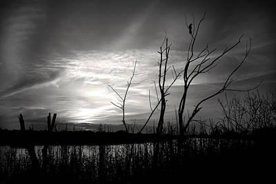 Sunset In Black And White Print by Mark Andrew Thomas