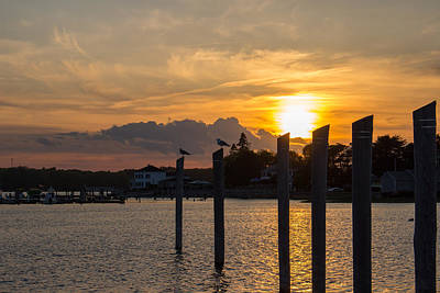 Seagull Photograph - Sunset In Camp Ellis - Silhouette by Kirkodd Photography Of New England