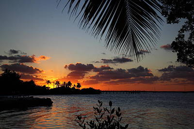 Sunset In Paradise Print by Michelle Wiarda