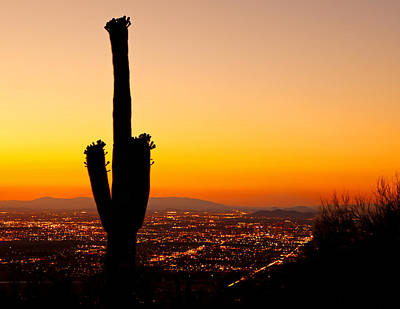 Sunset On Phoenix With Saguaro Cactus Print by Susan  Schmitz