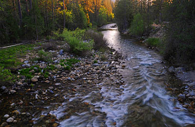 Yosemite Photograph - Sunset On The Merced by Lynn Bauer
