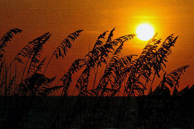 Sunset Over Sea Oats Antique Style A Print by David Lee Thompson
