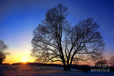 Sunset Over Valley Forge Print by Olivier Le Queinec