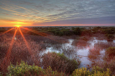 Sunset Over Wetlands At Ocean Shores Print by Tom Norring