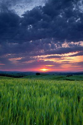 Sunset Over Wheat Field Near Pienza Print by Brian Jannsen