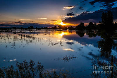A Summer Evening Landscape Photograph - Sunset Reflections by Steven Reed