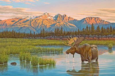 Moose Painting - Sunset Solitude     by Paul Krapf