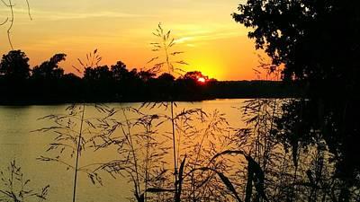 Bottomlands Photograph - Sunset Solitude  by Pamela Morgan