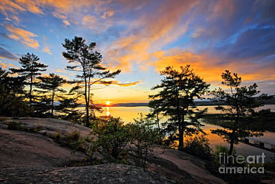 White Pines Photograph - Sunset Spectrum by Charline Xia