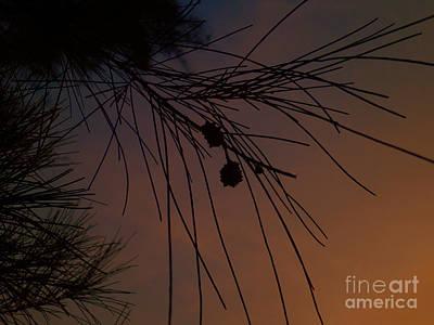 Sunset Tree Print by Artist Nandika  Dutt