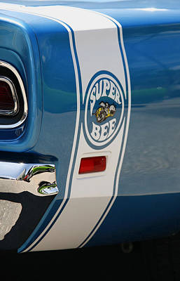 Super Bee Photograph - Super Bee by Morris  McClung