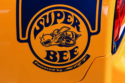 Super Bee Print by Rachel Cohen