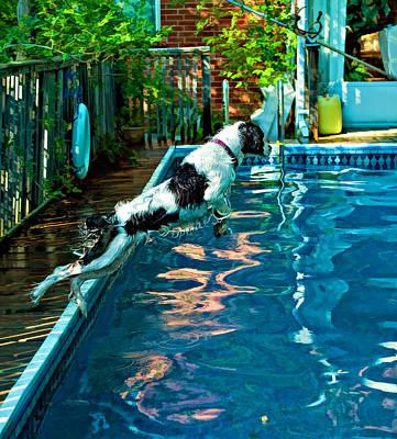 Water Play Photograph - Super Dog by Steve Harrington