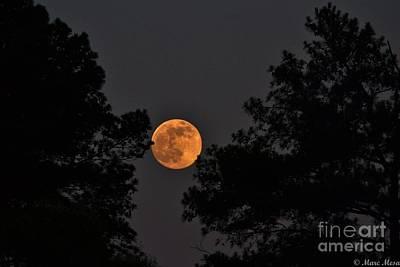 Super Moon Print by Marc Mesa