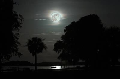 Palmetto Tree Photograph - Super Moon Over Wimbee Creek by Scott Hansen