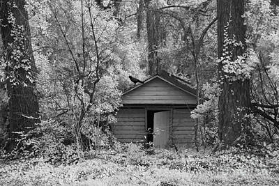 Sureal Gothic Infrared Woodlands Haunting Spooky Eerie Old Building With Black Ravens Print by Kathy Fornal