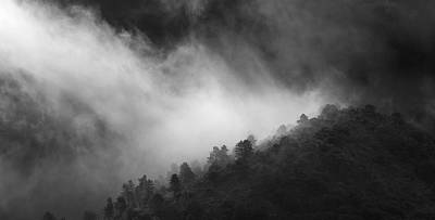 Surprise At The Forest Print by Guido Montanes Castillo