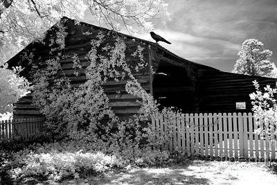 Surreal Black And White Infrared Gothic Nature Barn Landscape With Black Raven Print by Kathy Fornal