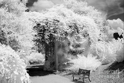 Surreal Dreamy Ethereal Black And White Infrared Garden Landscape Print by Kathy Fornal