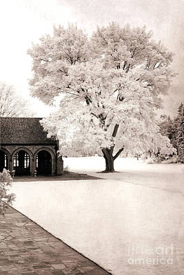 Surreal Dreamy Ethereal Winter White Sepia Infrared Nature Tree Landscape Print by Kathy Fornal