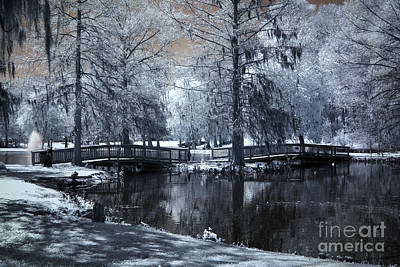 Surreal Dreamy Fantasy Nature Infrared Landscape - Edisto Park South Carolina Print by Kathy Fornal