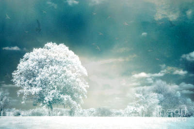 Surreal Landscape Photograph - Surreal Dreamy Infrared Teal Turquoise Aqua Nature Tree Lanscape by Kathy Fornal