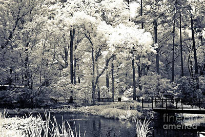 Surreal Dreamy Infrared Trees Nature Landscape Print by Kathy Fornal