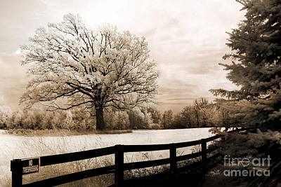 Surreal Dreamy Infrared Trees Nature Sepia Ethereal Landscape With Fence Print by Kathy Fornal