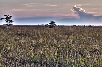 Everglades Photograph - Surreal Everglades Savannah by Jonathan Gewirtz