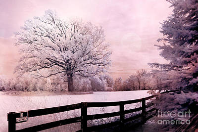 Surreal Fantasy Dreamy Pink Infrared Trees And Nature Landscape  Print by Kathy Fornal