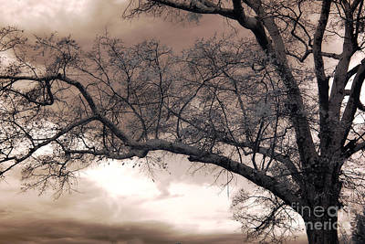 Surreal Fantasy Gothic South Carolina Oak Trees Print by Kathy Fornal
