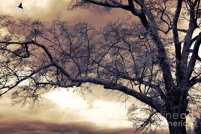 Autumn Landscape Photograph - Surreal Fantasy Gothic South Carolina Tree Bird by Kathy Fornal