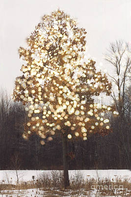 Surreal Fantasy Tree Nature Sparkling Lights Print by Kathy Fornal