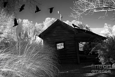 Gothic Fantasy Photograph - Surreal Gothic Black And White Infrared Nature Haunting Old House With Flying Ravens by Kathy Fornal