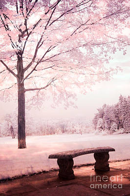 Surreal Infrared Dreamy Pink And White Park Bench Tree Nature Landscape Print by Kathy Fornal
